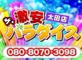 ザ・激安パラダイス 太田店