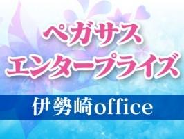 Pegasus Enterprise co.,ltd -ペガサス・エンタープライズ-伊勢崎office
