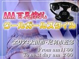 AAA百花繚乱クールガールスタイル太田・足利店