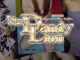 New Dandy Lion
